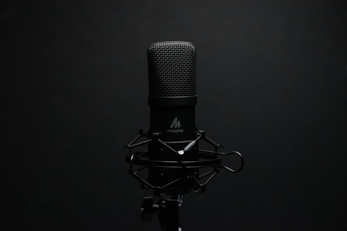 Stand-alone, black microphone