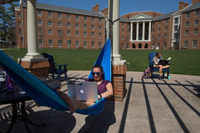 Students studying outside of Harrison Hall