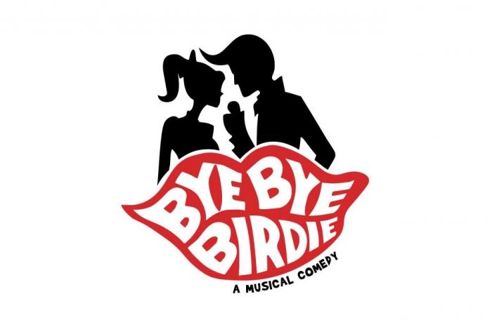 Bye, Bye, Birdio logo