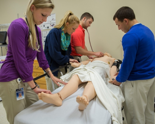 PA students practicing on a dummy