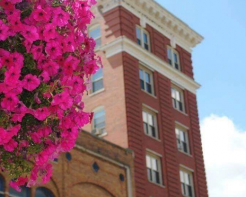 Flowers in downtown Marietta