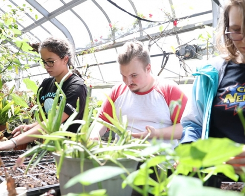 Three students working with plants in the greenhouse